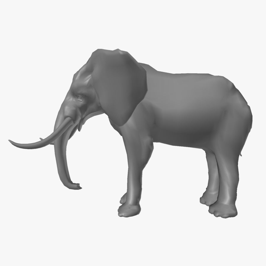 elephant african royalty-free 3d model - Preview no. 4