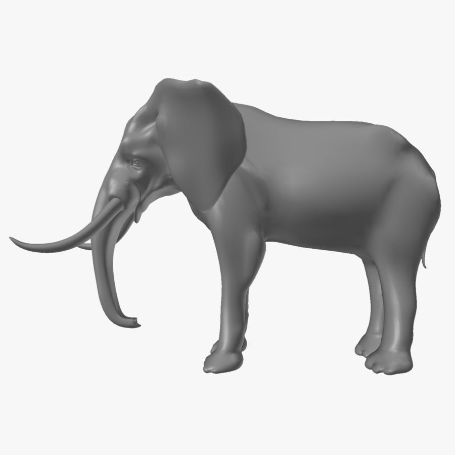 elephant african royalty-free 3d model - Preview no. 6