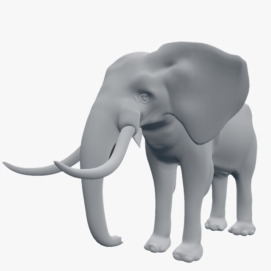 elephant african royalty-free 3d model - Preview no. 1