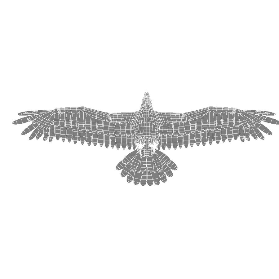 Eagle royalty-free 3d model - Preview no. 21