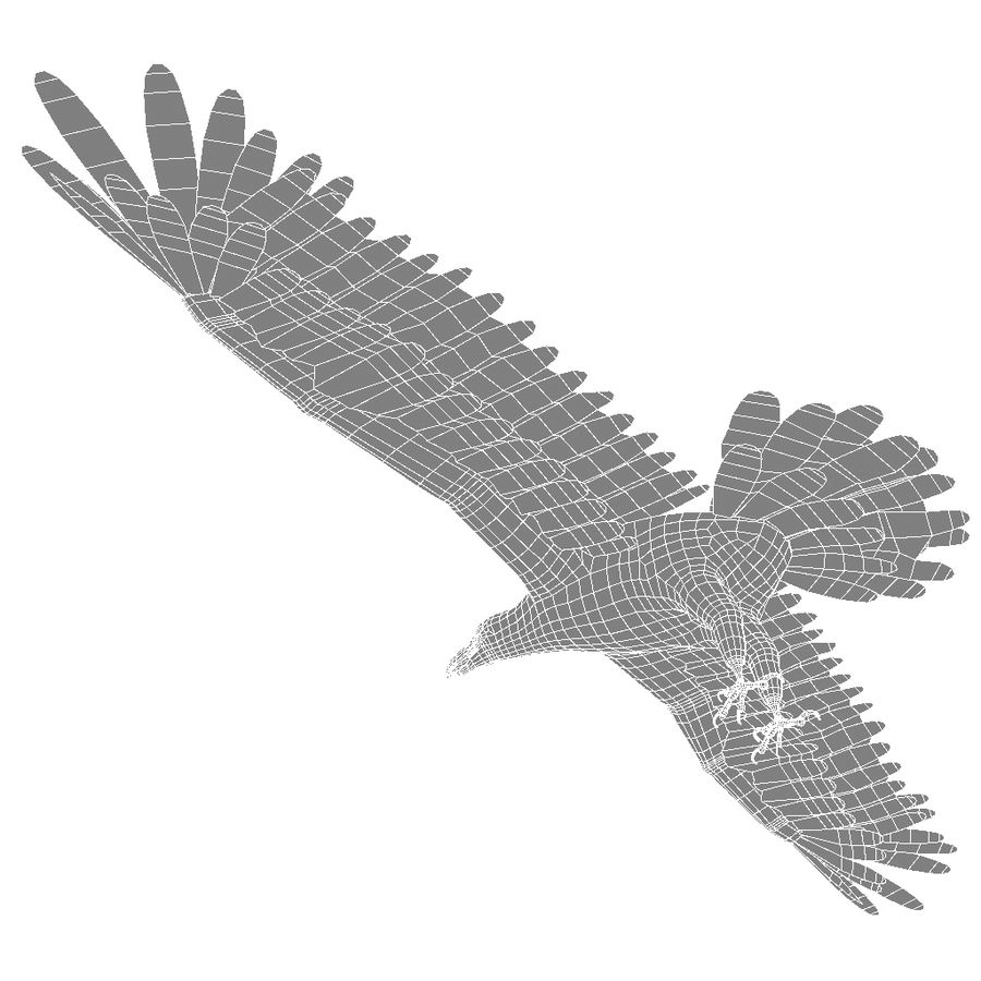Eagle royalty-free 3d model - Preview no. 27
