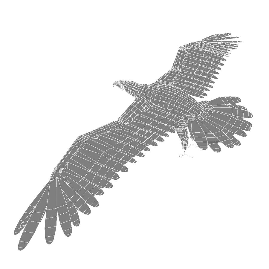 Eagle royalty-free 3d model - Preview no. 25
