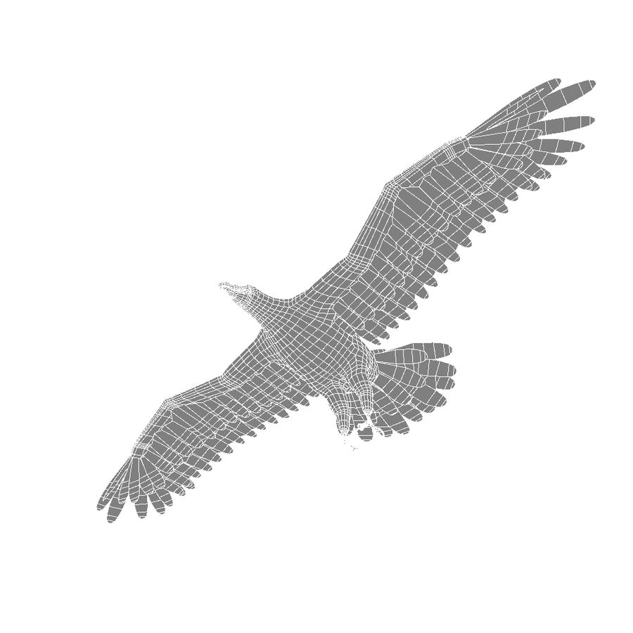 Eagle royalty-free 3d model - Preview no. 5