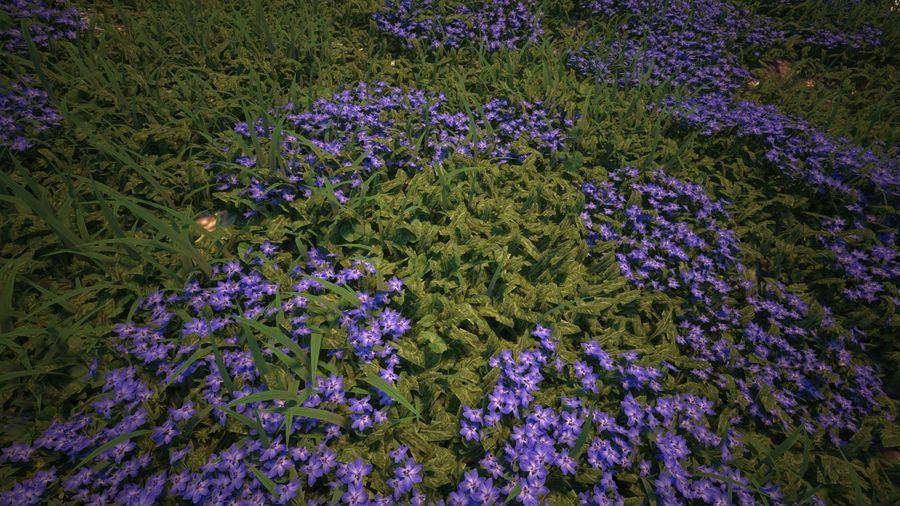 環境のための草と花 royalty-free 3d model - Preview no. 8