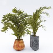 树木 3d model