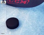 Hockeystick & puck 3d model