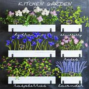 家庭菜園 3d model