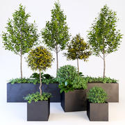Ağaçlar) 3d model