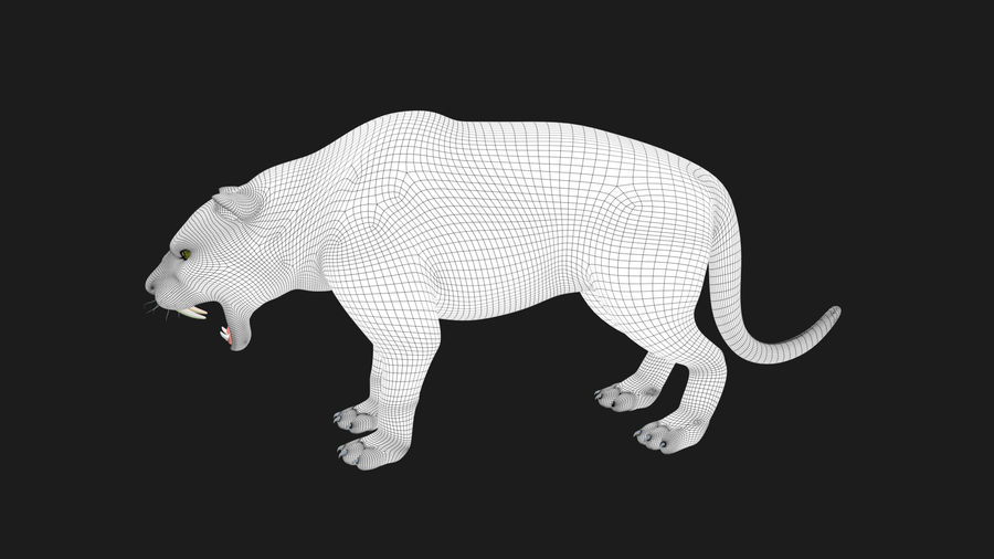 Pele de tigre royalty-free 3d model - Preview no. 6