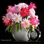 Set de fleurs 20 3d model