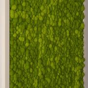 无缝的苔藓 3d model