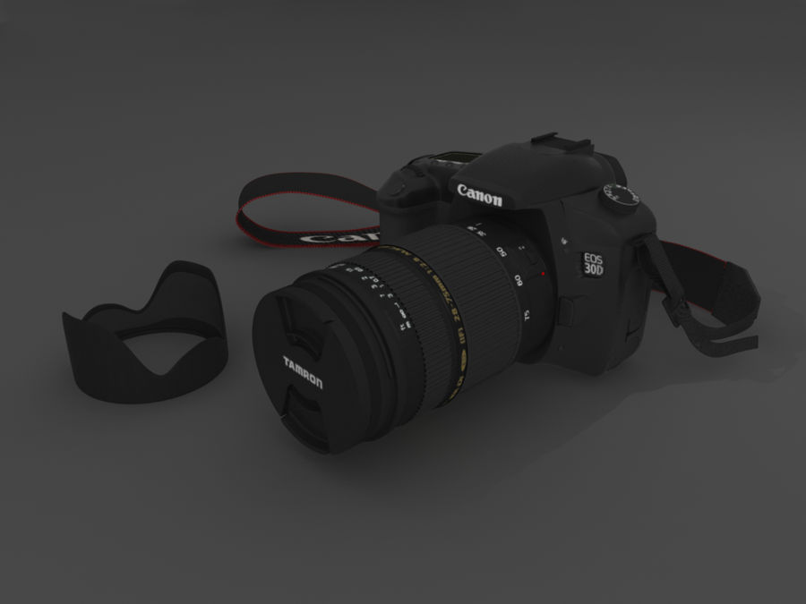 CANON 30D royalty-free 3d model - Preview no. 1