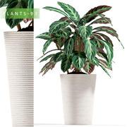 växter 93 3d model