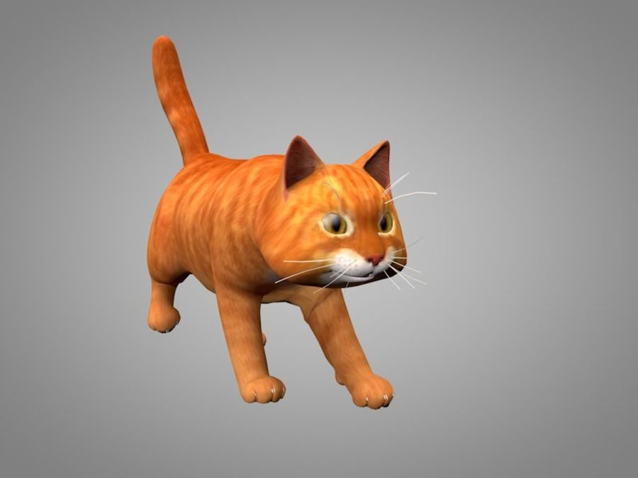 Katt eller katt royalty-free 3d model - Preview no. 1
