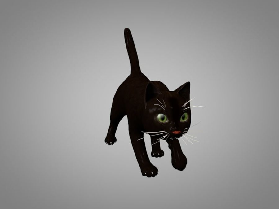 Katt eller katt royalty-free 3d model - Preview no. 7