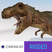 Tyrannosaurus Rex model rigged 3d model
