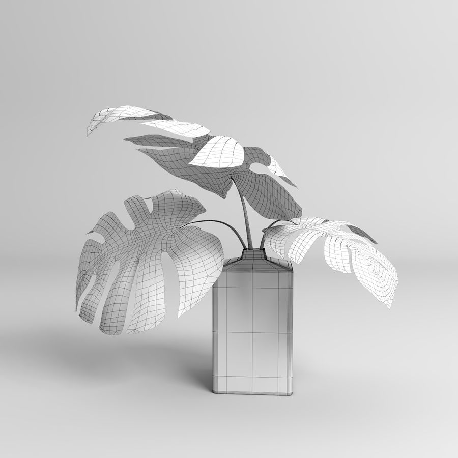 モンステラプラント(+ GrowFX) royalty-free 3d model - Preview no. 18