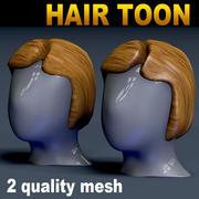 Hair Toon 2 calidad de malla modelo 3d