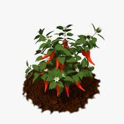 Pepper Plant 3d model
