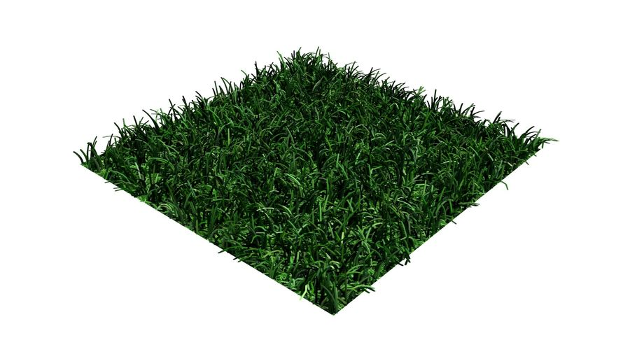 grass multi royalty-free 3d model - Preview no. 3