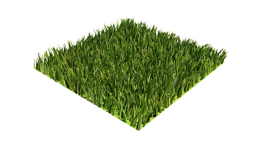 grass multi royalty-free 3d model - Preview no. 4