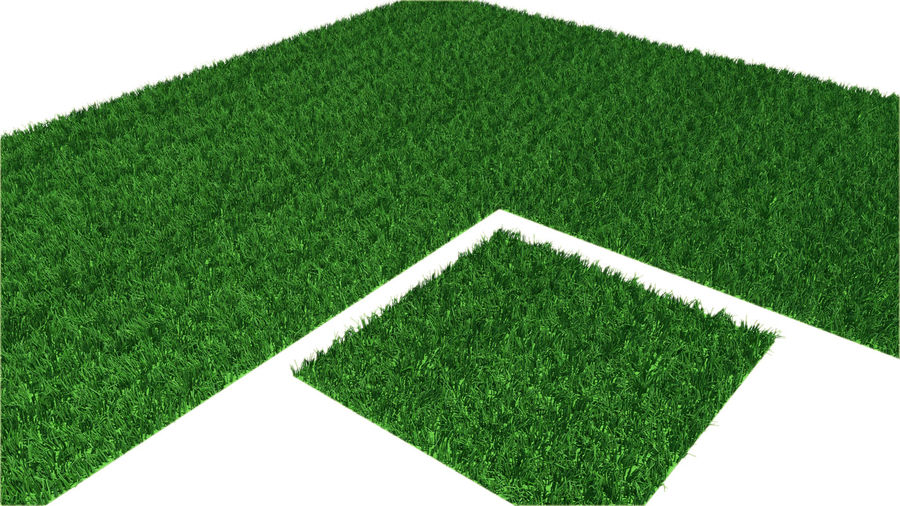 grass multi royalty-free 3d model - Preview no. 7