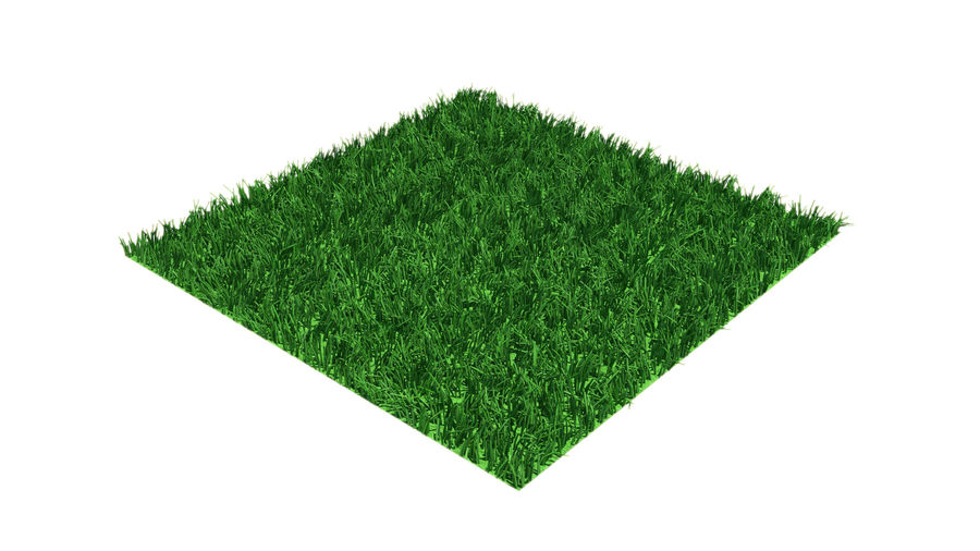 grass multi royalty-free 3d model - Preview no. 2