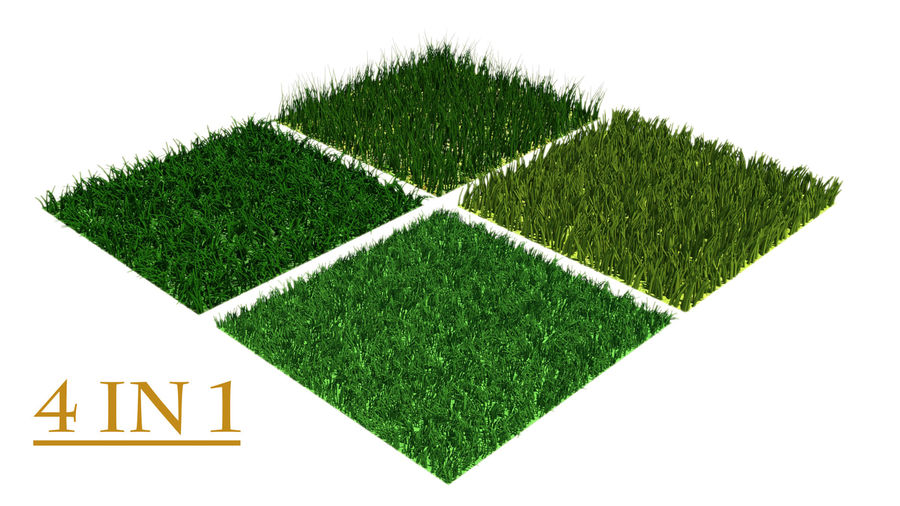 grass multi royalty-free 3d model - Preview no. 1
