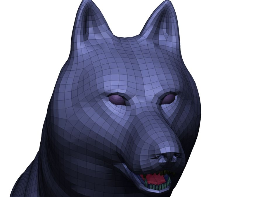 Wolf Base Mesh royalty-free 3d model - Preview no. 14