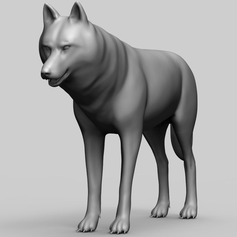 Wolf Base Mesh royalty-free 3d model - Preview no. 1