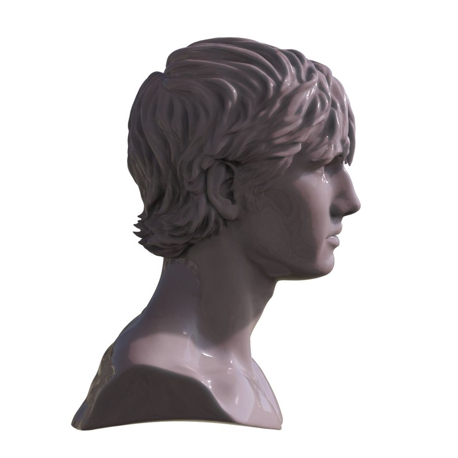 Decimated Alex Pettyfer royalty-free 3d model - Preview no. 4