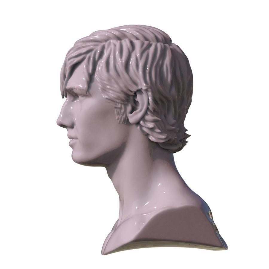 Decimated Alex Pettyfer royalty-free 3d model - Preview no. 6