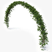 Ivy Arch 3d model