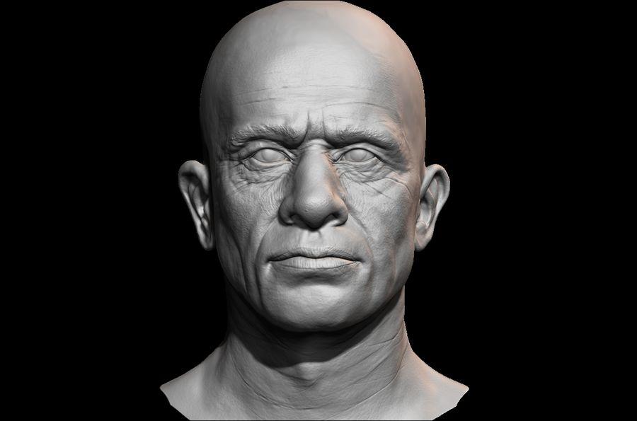 Высоко детализированное среднее мужское лицо с ультрафиолетом и низким поли royalty-free 3d model - Preview no. 1
