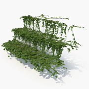 Ivy Stairs 3d model