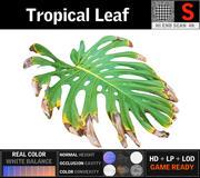 Hoja tropical modelo 3d