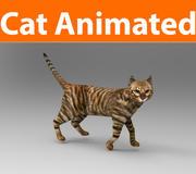 猫のアニメーション 3d model