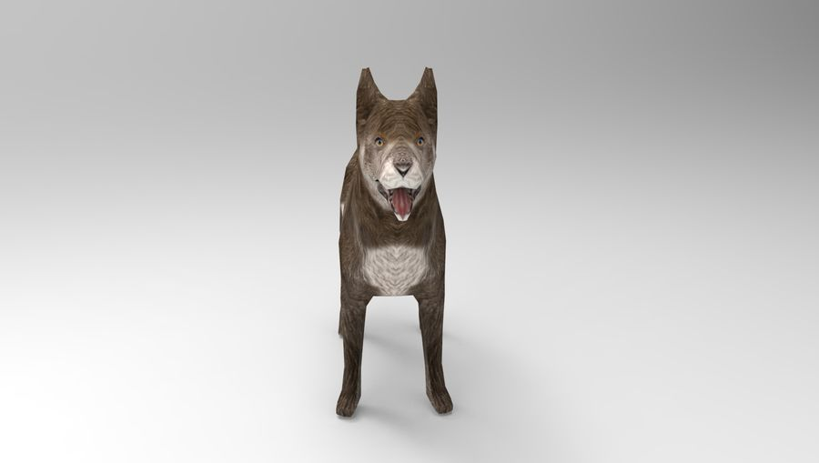 dog rigged(1) royalty-free 3d model - Preview no. 12