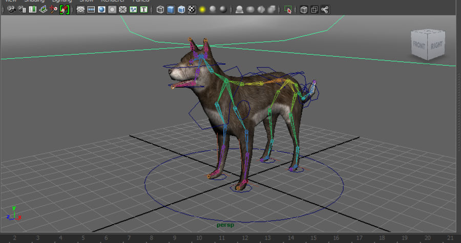 dog rigged(1) royalty-free 3d model - Preview no. 19