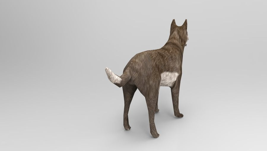 dog rigged(1) royalty-free 3d model - Preview no. 8