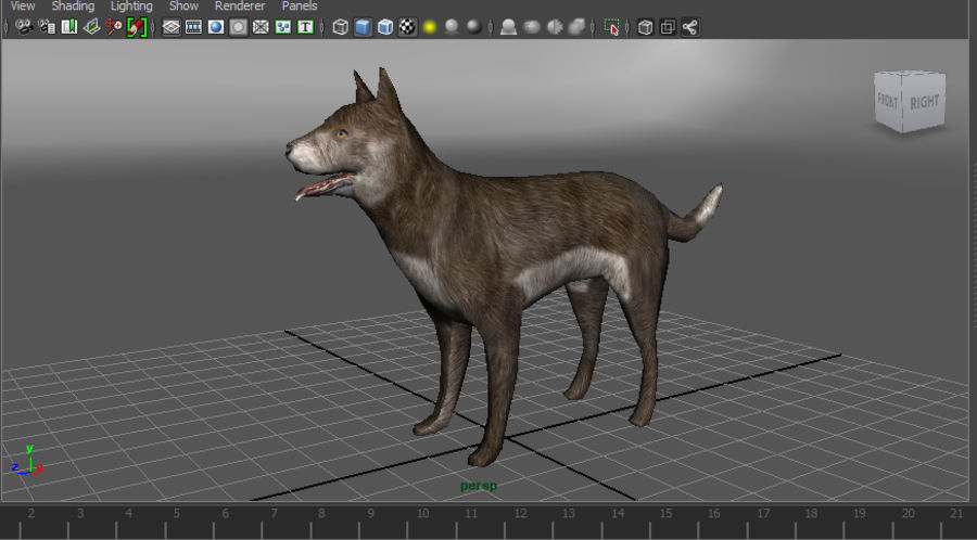 dog rigged(1) royalty-free 3d model - Preview no. 18