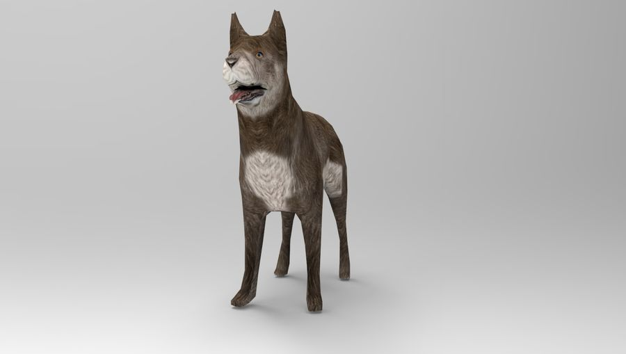 dog rigged(1) royalty-free 3d model - Preview no. 16