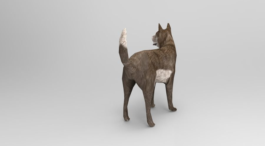 dog rigged(1) royalty-free 3d model - Preview no. 7