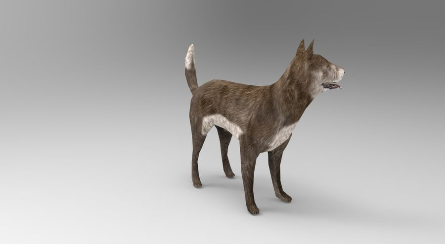 dog rigged(1) royalty-free 3d model - Preview no. 4