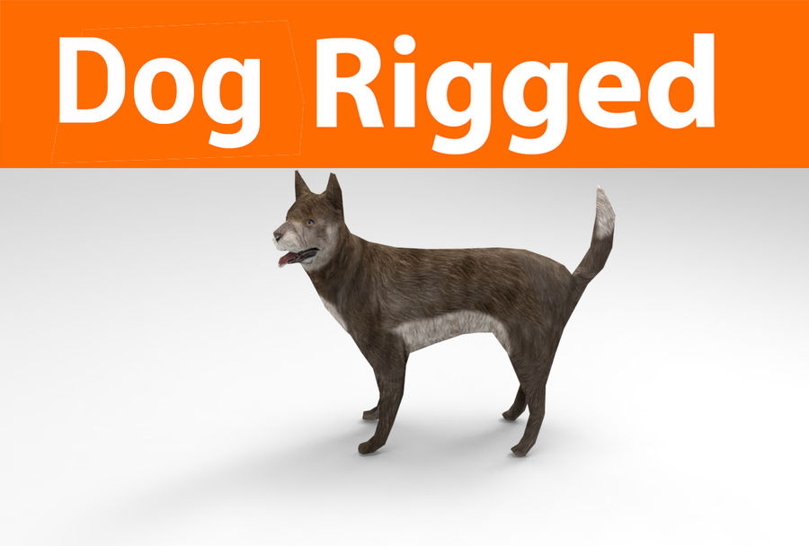 dog rigged(1) royalty-free 3d model - Preview no. 1
