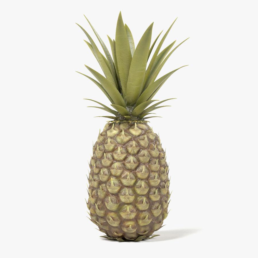 Pineapple 3d Model 49 Blend Fbx Obj Dae 3ds Free3d