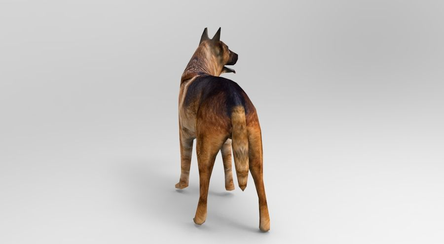 german shepherd dog rigged royalty-free 3d model - Preview no. 6