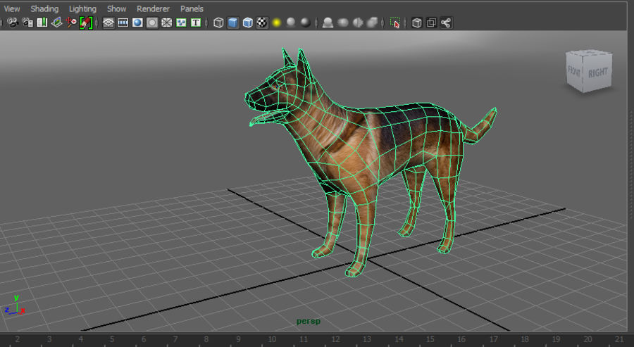 german shepherd dog rigged royalty-free 3d model - Preview no. 17