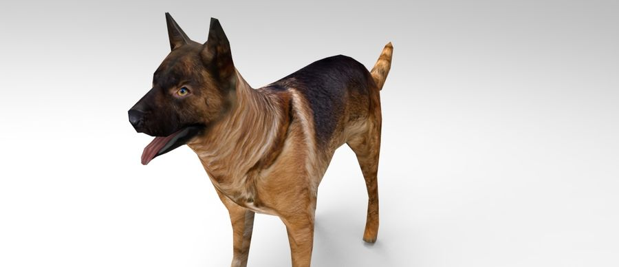 german shepherd dog rigged royalty-free 3d model - Preview no. 14