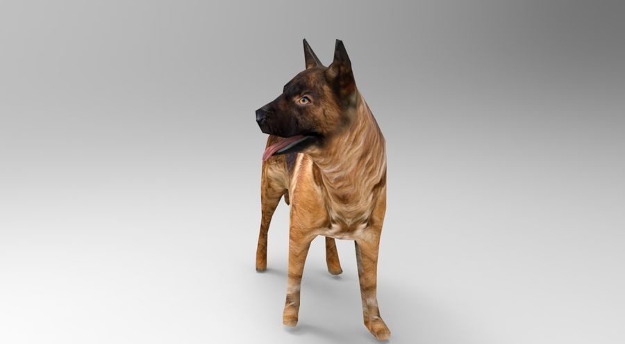 german shepherd dog rigged royalty-free 3d model - Preview no. 2